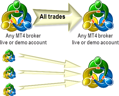 Metatrader free mt4 trade copier