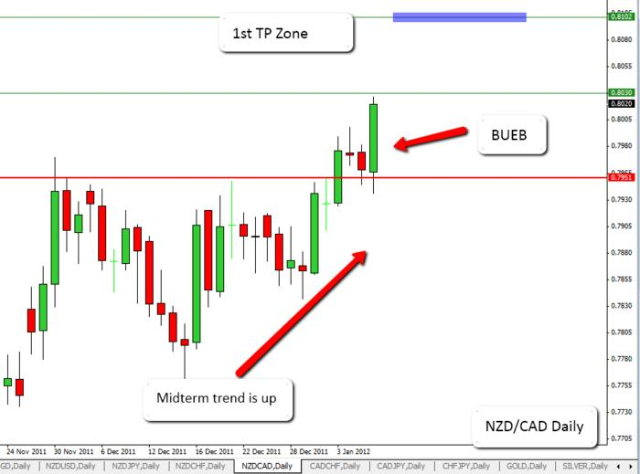 Name:  2012-01-08_NZD_CAD_Daily.jpg