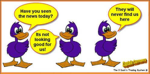 Y forex 3 ducks